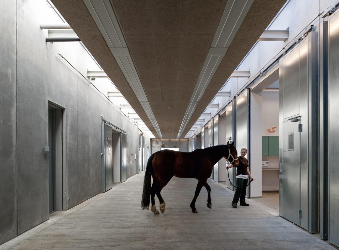 Large Animal Teaching Hospital, University of Copenhagen. Photo: Adam Mørk